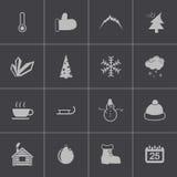 Vector black  winter  icons set Royalty Free Stock Photo