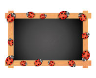 Vector. Blackboard on white. Stock Image