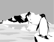 Vector blanco y negro de la naturaleza Imagen de archivo libre de regalías