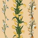 Vector bloemen naadloos patroon met gele tulpen, sneeuwklokjes en gele narcissen royalty-vrije illustratie