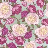 Vector bloemen naadloos patroon met hand getrokken roze en witte pioenen Royalty-vrije Stock Foto's