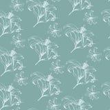 Vector bloemen naadloos patroon met Lelies in uitstekende stijl Royalty-vrije Stock Fotografie