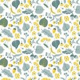 Vector bloemen naadloos patroon met lindebloemen Hand getrokken ecoontwerp stock illustratie