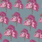 Vector bloemen naadloos patroon met Perzische boterbloem en pioenen Stock Foto's
