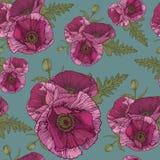 Vector bloemen naadloos patroon met roze papavers Stock Foto's