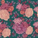 Vector bloemen naadloos patroon met rozen en Perzische boterbloem Stock Afbeeldingen