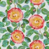 Vector bloemen naadloos patroon met waterverfrozen Royalty-vrije Stock Afbeelding