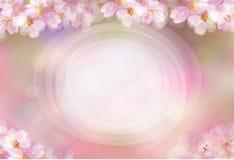 Vector bloemen, roze, bokeh achtergrond royalty-vrije illustratie