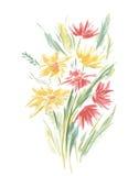 Vector Bloemen van Geschilderde Kleurrijke Bloemenwaterverf Stock Fotografie
