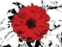 Vector bloemenachtergrond Stock Afbeeldingen