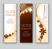 Vector Bloemenbanners. Abstracte Eps10-Achtergronden. Stock Afbeeldingen