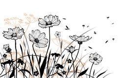 Vector bloemenelementen Stock Afbeeldingen