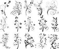 Vector bloemenelementen voor ontwerp Stock Afbeeldingen