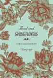 Vector bloemengroetkaart met tulpen en jasmijnbloemen Stock Foto