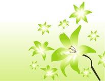 Vector bloemenillustratie Stock Afbeeldingen