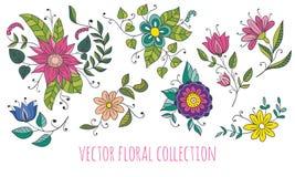 Vector bloemeninzameling Stock Foto's