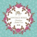 Vector bloemenkaart met een rond kader van roze rozen Stock Afbeeldingen