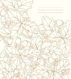 Vector bloemenkaart, retro eiken bladeren en eikels. Royalty-vrije Stock Foto