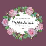 Vector bloemenkader met waterverf roze rozen op violette achtergrond Royalty-vrije Stock Foto's
