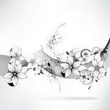 Vector bloemenontwerpelement Stock Foto