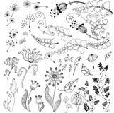 Vector bloemenreeks stock afbeeldingen