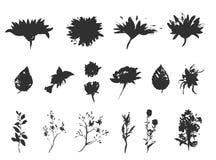Vector bloemenreeks Inzameling met bladeren De lente of de zomerontwerp voor uitnodiging, huwelijks of groetkaarten Royalty-vrije Stock Afbeelding