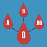 Vector of blood type transfusion Royalty Free Stock Photography