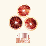 Oil bloody oranges. Vector illustration of orangess three slices.  Digital drawing, oil effect Stock Photography