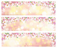 Vector blossoming spring banners. Vector blossoming branches of tree, spring banners, blurred effect Stock Photography