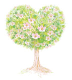 Vector blossoming tree heart shape. Stock Photo