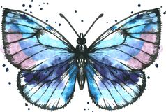 Vector blue butterfly in watercolor Stock Photo