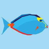 Vector Blue Fish Isolated On Blue. Background Royalty Free Stock Image