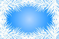 Fir branches. Vector blue frame with fir branches Stock Photography