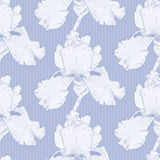 Vector blue seamless background. Vector illustration seamless background with iris flowers Stock Photography