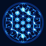 Vector blue Tree of Life, sacred geometry symbol. Important symbol in many religions Stock Photo
