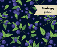 Vector blueberry seamless pattern. background, pattern, fabric design, wrapping paper, cover. Vector blueberry seamless pattern. background, pattern, fabric Royalty Free Stock Photo