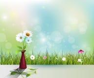 Vector Blume des weißen Gänseblümchens im roten Vase auf helle Farbboden Stockbild