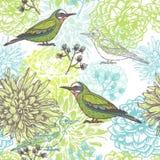 Vector Blumenhand gezeichnetes nahtloses Muster mit Vögeln und Kräutern Stockbild