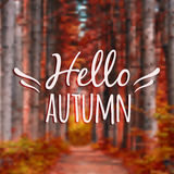 Vector blurred autumn landscape background with typography text Royalty Free Stock Photo