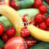 Vector blurred background with fruits, vegetables and eco label royalty free illustration