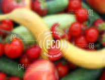 Vector blurred background with fruits, vegetables and eco label Royalty Free Stock Photography