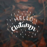 Vector blurred background with inscription Autumn . Hand lettering poster. Stock Image