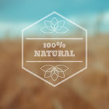 Vector blurred nature eco background  eps 10 Stock Photos