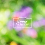 Vector blurred nature summer green background Stock Image
