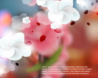 Vector blurred realistic cherry blossom flower background Stock Image