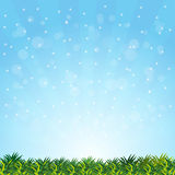 Vector blurry summer with grass presentation Stock Images