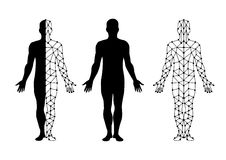 Vector body isolate and body mesh. illustration  design. Royalty Free Stock Image