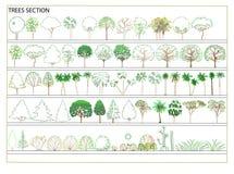 Vector bomen Stock Foto