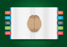 Vector book and brain of business concept Royalty Free Stock Photos