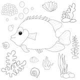 Vector, book. Coloring fish sea life Royalty Free Stock Photo